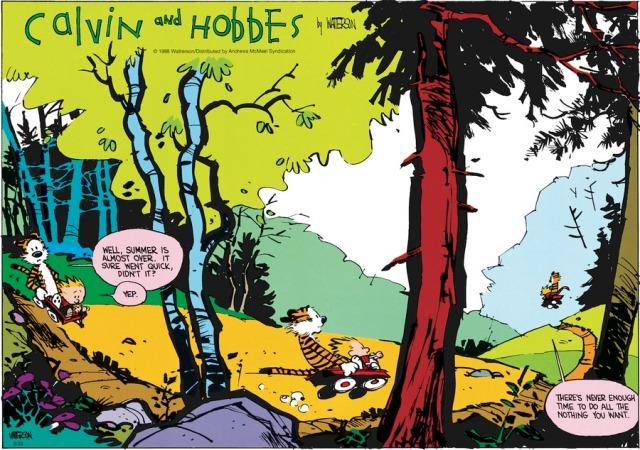 Calvin Doing Nothing