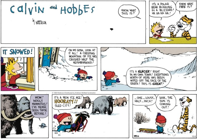 Calvin's Expectations